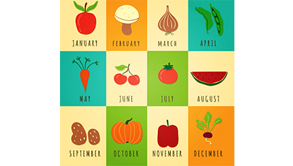 12 seasonal vegetables and fruits vector material