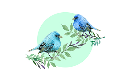 Blue bird vector material on 2 branches