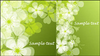 Fresh summer flowers the Phantom background vector -1
