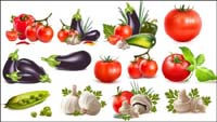 Peppers, eggplants, tomatoes, garlic, beans, cucumber, tomato